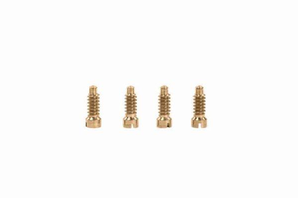 cartier must case-back screws-2